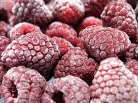 Diepvries stukjes frambozen bevatten norovirus