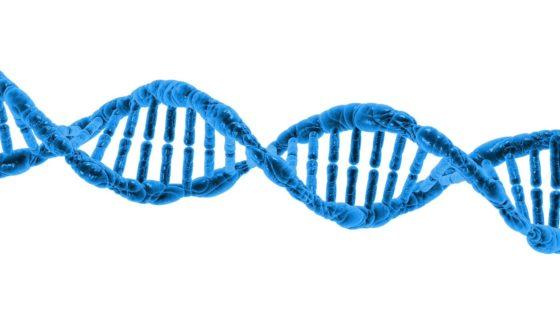 Huidige risicobeoordelingsmethode niet toegerust op ontwikkelingen biotechnologie