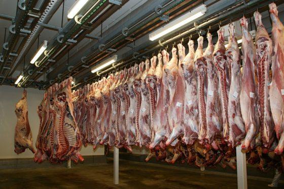 Vleesindustrie gaat onder leiding Vion CO2-voetafdruk in de keten verminderen
