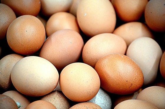 Zuid-Hollandse eierhandelaar krijgt forse boete om voedselfraude