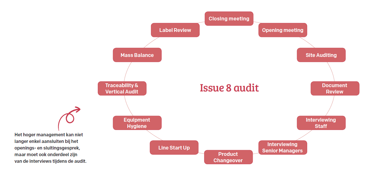 Issue 8 audit