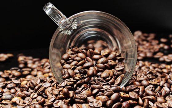 Regelgeving blokt circulair gebruik koffieafval
