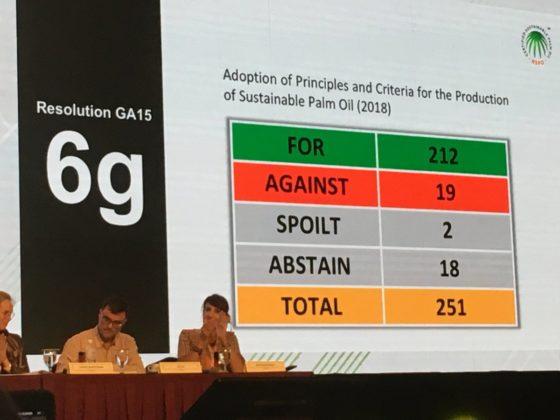 MVO-blog: Geen ontbossing meer bij duurzame palmolieproductie