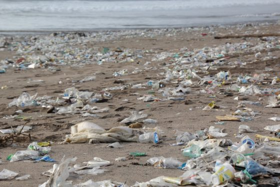 Europese Commissie stelt verbod op eenmalig gebruikt plastic voor