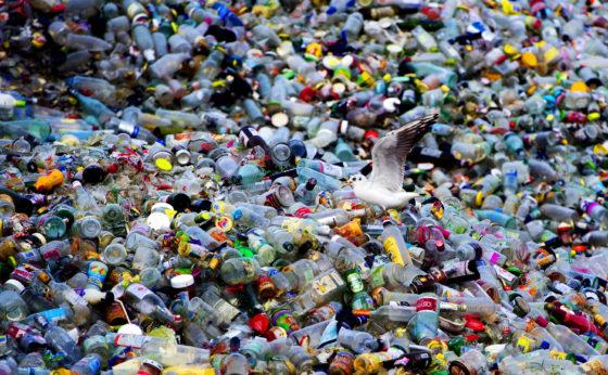 Nestlé zet volgende stap in terugdringen van plastic afval