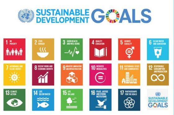 'Sustainable Development Goals worden amper gebruikt in bedrijfsstrategie'