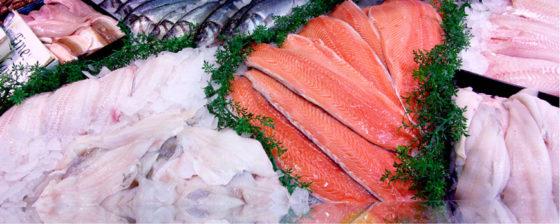Foodwatch blij met handhaven norm kwikgehalte vis