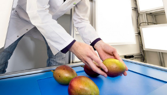 Camerasysteem verbetert kwaliteitsbepalingen  groenten en fruit