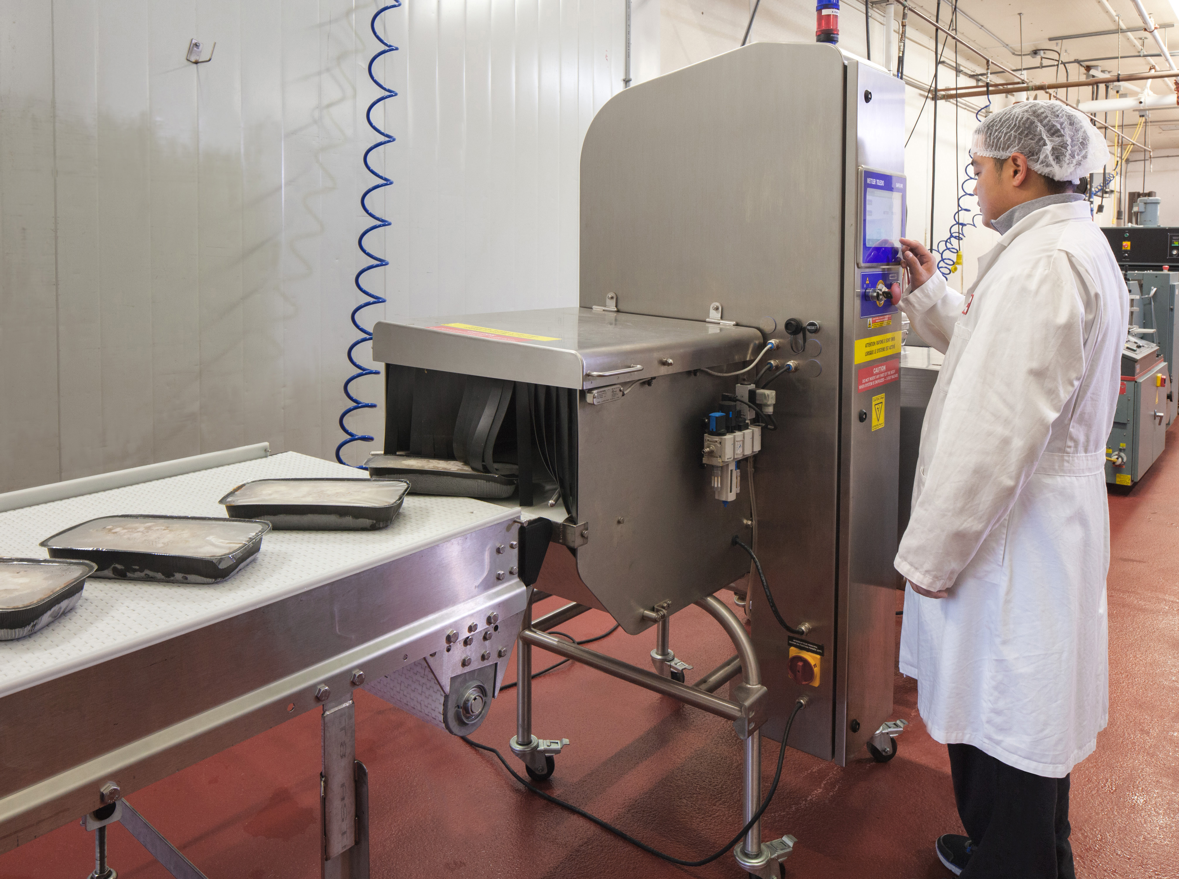 X-ray - product inspection of lasagnes Mettler Toledo