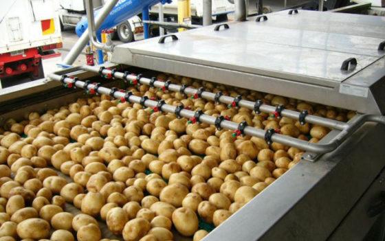 ABN Amro: Nederlandse voedingsindustrie scoort hoog op arbeidsproductiviteit