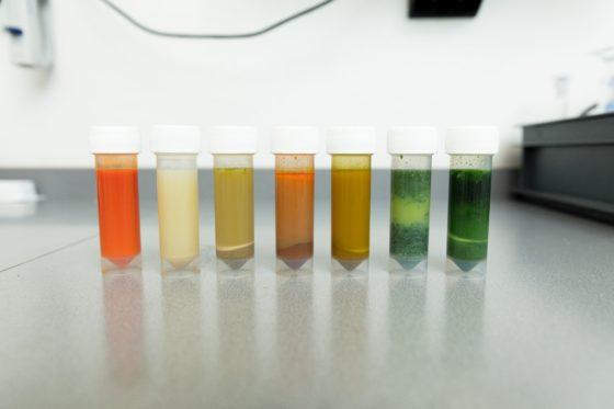 PCR-test ontdekt niet altijd allergeen