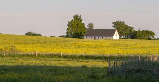 Canada lanceert supercluster plantaardige eiwitten, Nederlandse kennis welkom