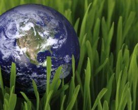Corbion wil in 2030 100% elektriciteit uit hernieuwbare bronnen gebruiken