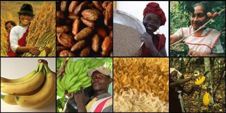 Voedingsmiddelen met keurmerk omzetmakers voor supermarkten