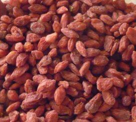 Frequente controle van gojibessen vanwege residuen