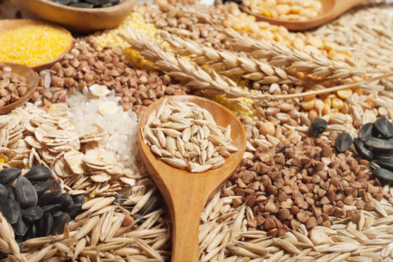 Proefdieronderzoek: 'Consumptie vezels helpt stress te beperken'