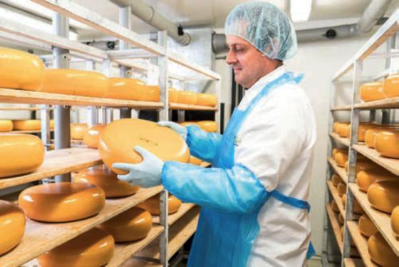 Goudse kaas goed gewapend tegen Listeria