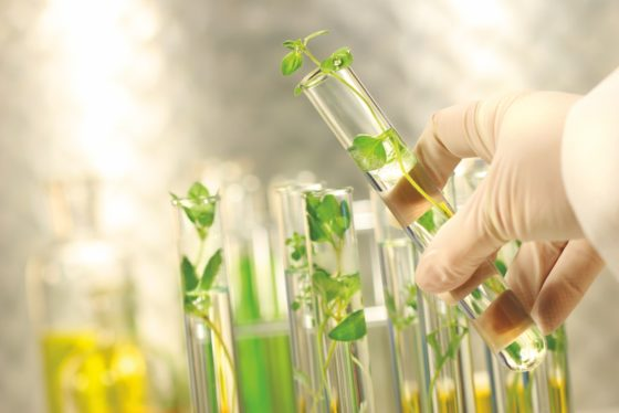 Clean Label is niet meer weg te denken uit voedingsindustrie