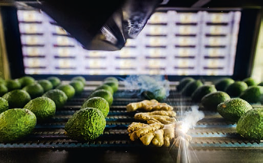 Biologische agf-producten milieuvriendelijk merken met laser