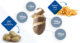 Synergo aardappel verwaarding 80x43