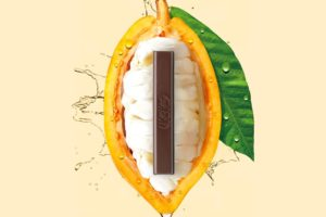 Nestlé introduceert 70% pure chocolade volledig van cacaovrucht