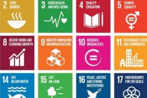 27-9 & 3-10 | Workshop SDG's toepassen in uw foodbedrijf
