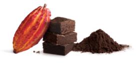 Bensdorp introduceert alkalivrije cacaopoeder