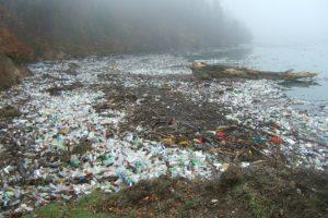 TNO: 'Plastics in rivieren groter probleem dan plastic in oceaan'