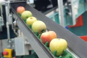 Hoe en wanneer investeren in robotica in de voedingsindustrie?