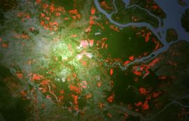 Palmolie-industrie introduceert radartechniek om ontbossing tegen te gaan