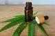 'Cannabis heeft veel toepassingsmogelijkheden voor de voedingsindustrie' (video)