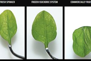 Isochorisch invriezen kan kwaliteit diepvriesproducten verbeteren